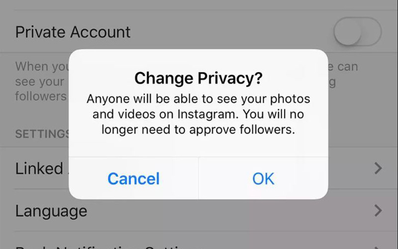 Private Instagram: Private Follows, Delete History, More